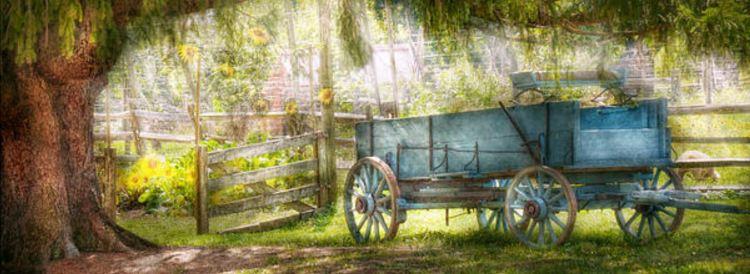 wagon21234